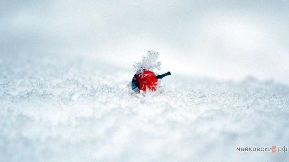 ВПрикамье объявлено штормовое предупреждение из-за морозов— МЧС