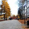 Сквер по ул. Советской откроют 13 сентября