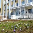 Суд вынес приговор менеджеру, обманувшей дольщиков на 12 млн рублей